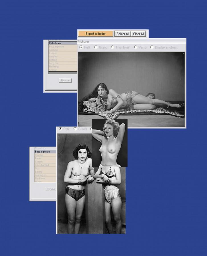 Paula Roush: Sex'n'Database - A Corporeal Taxonomy.